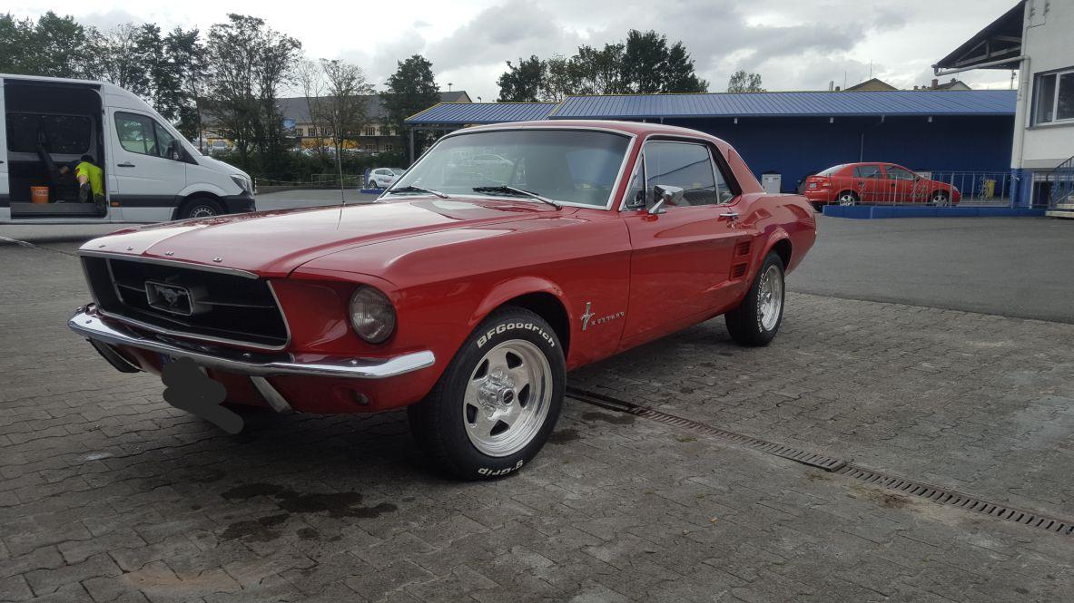 Mustang_Eisreiniger